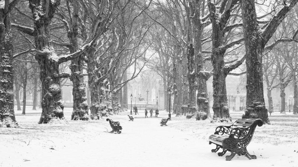 Hyde Park Snow