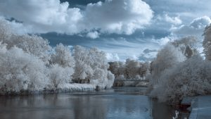 Infrared Photograph Channel Swap