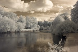 Infrared Photograph Custom Profile